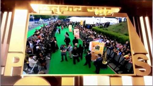 IIFA/Bollywood Green Carpet vs. Hollywood Red Carpet